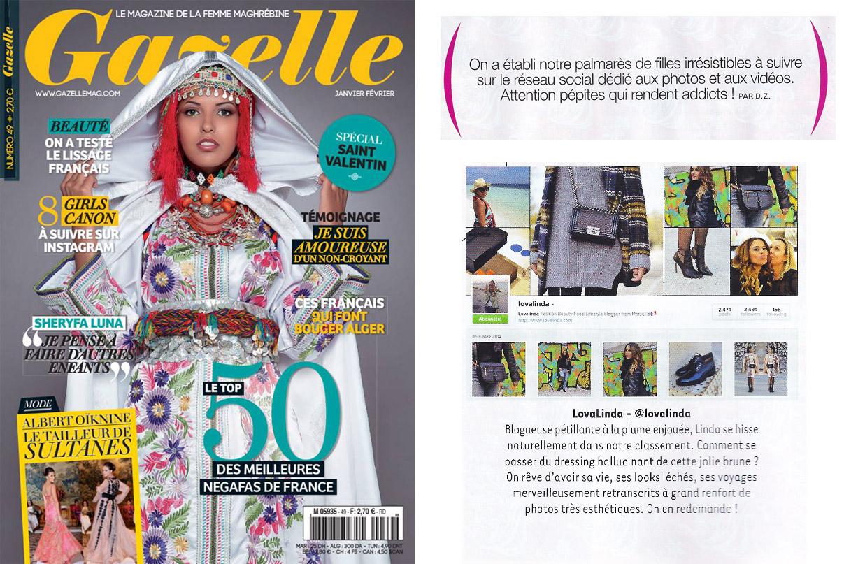 Article Gazelle Janvier 2014