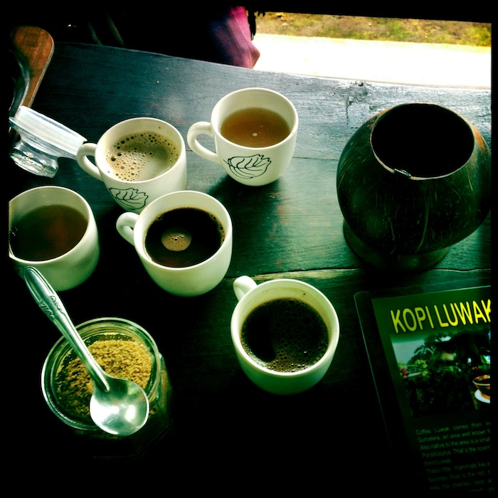 LovaLinda Bali Kayuamba Coffee Cacao