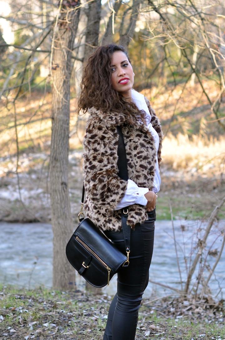 Leopard des bois - LovaLinda - NastyGal x Karl x Zara x 3.1 Philip Lim