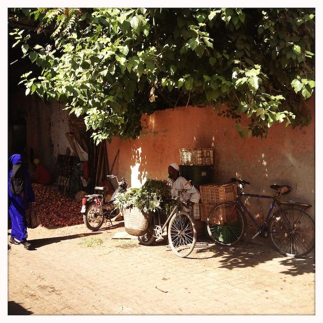 Les mille et une nuits à Marrakech | Lovalinda x Medina x Souk x Marchand à Vélo