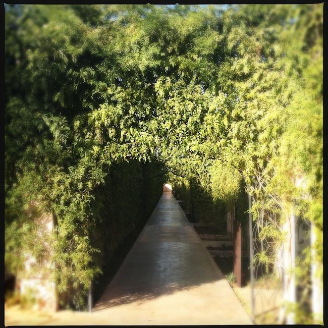 Les milles et une nuits à Marrakech | LovaLinda x Palais Namaskar x Chemin