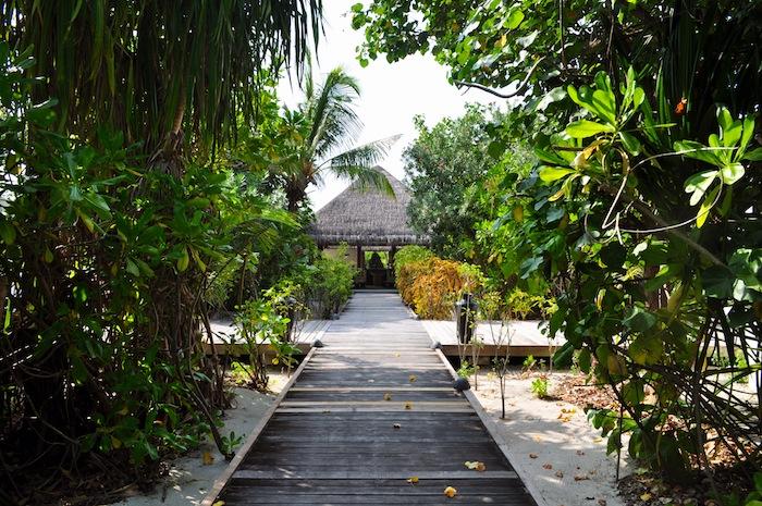 L'island Hideaway | Maldives | LovaLinda x SPa Hideway